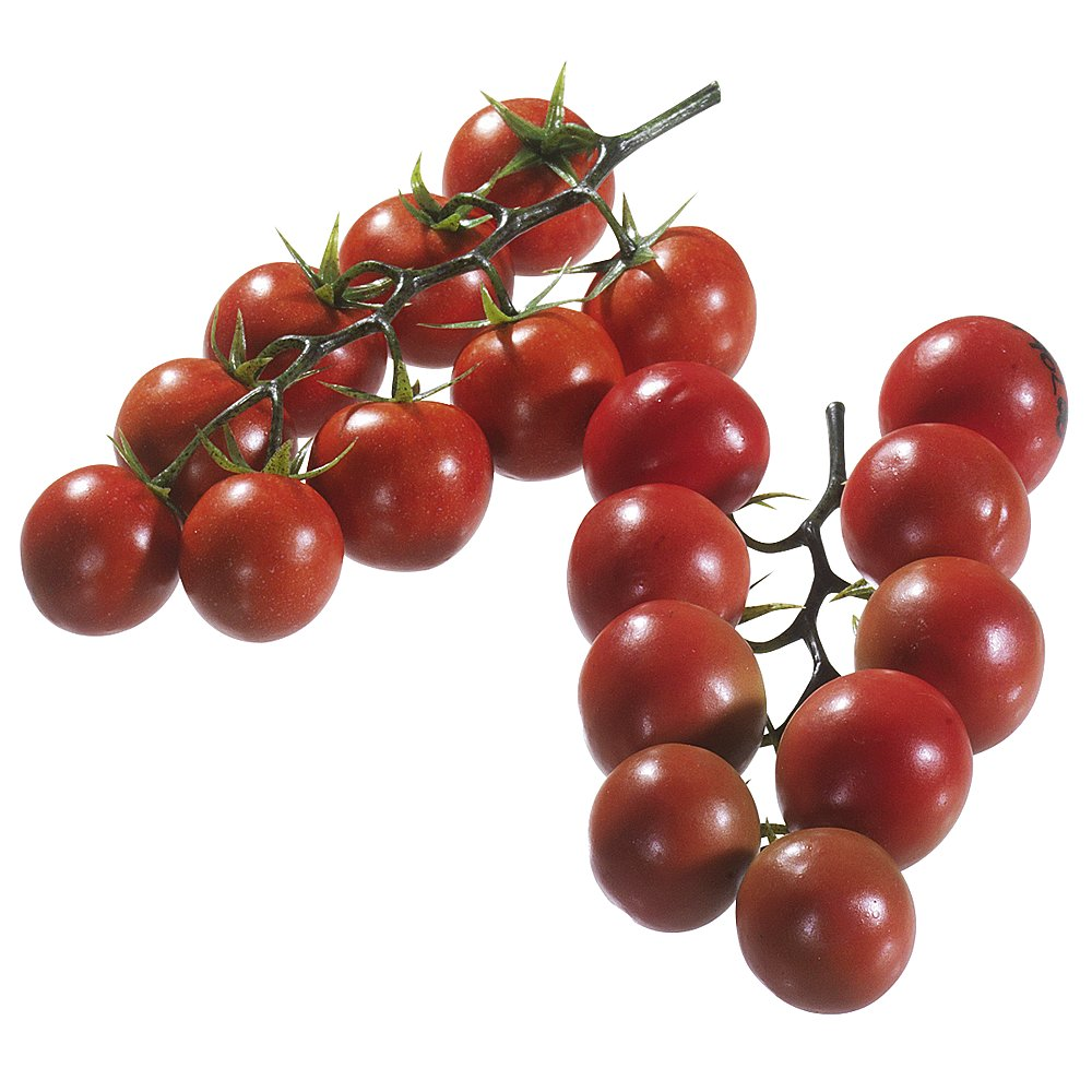 Italien tomaten rispen attrappe for Deko mieten